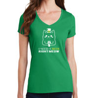 I Need A Beer Right Meow Ladies V-neck T-shirt Thumbnail